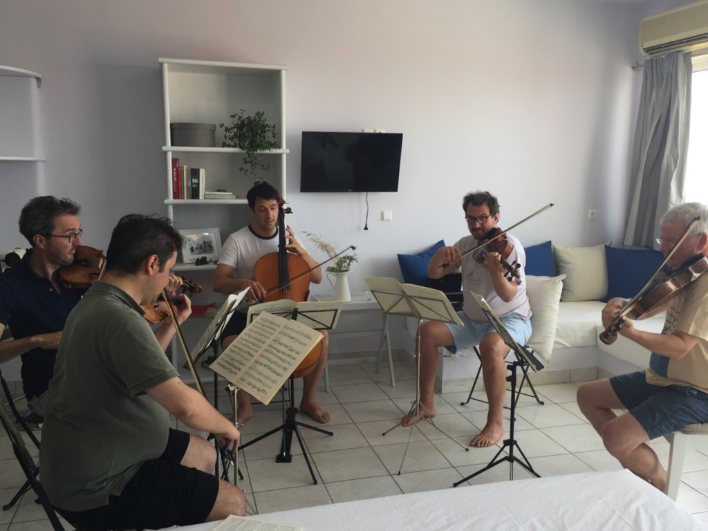 Saronic Chamber Orchestra Festival 2016 - practice at Live-Bio