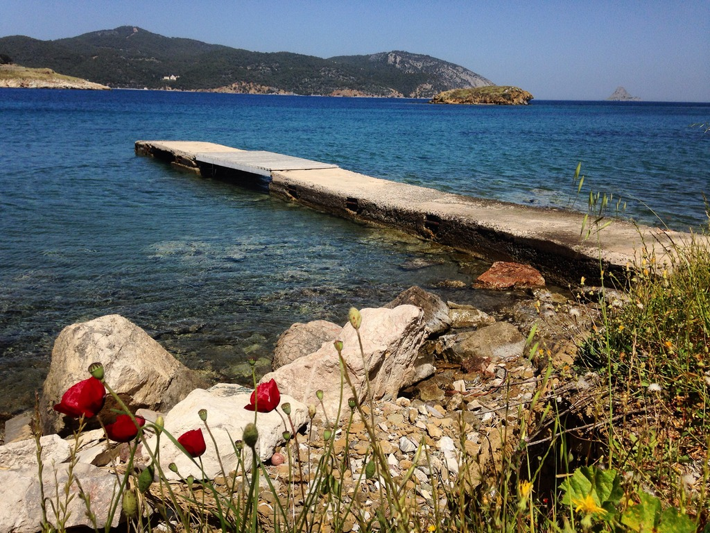 Aliki beach vicinity - walking distance from Live-Bio