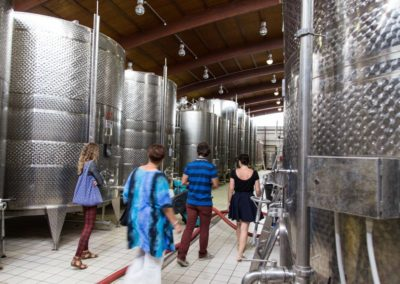 Wine making tour in Nemea